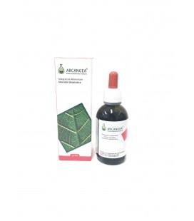 ARCANGEA Viola Tricolor Soluzione Idroalcolica BIO