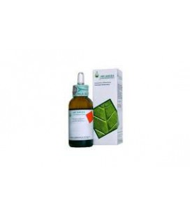 ROSA CANINA MG 50ML