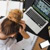 Combattere lo stress da rientro con i rimedi naturali